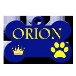ORION/MALE/AGE A VENIR/TAILLE PETITE A MOYENNE / CHEZ MARUSIA OU SON PAPA Orion10