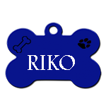 RIKO/MÂLE/né vers juin 18 /TAILLE moyenne adulte /peureux / chez une pauvre dame contact marusia Riko10