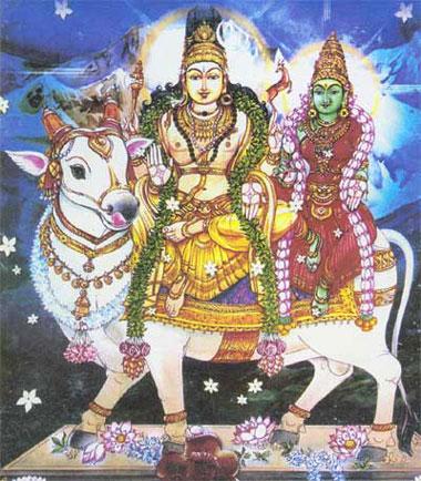 வைதிக சைவம்- வேற்றுமையில் ஒற்றுமை Inthu310