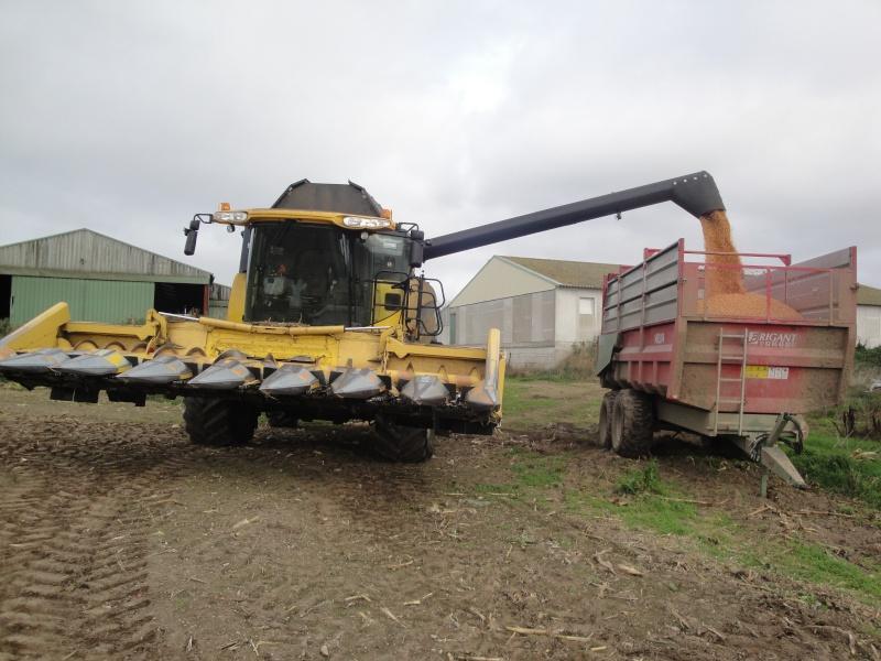 Moissons maïs 2009 Dsc00611
