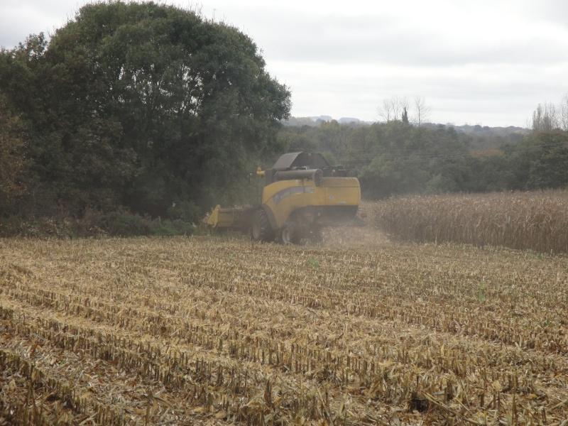 Moissons maïs 2009 Dsc00614