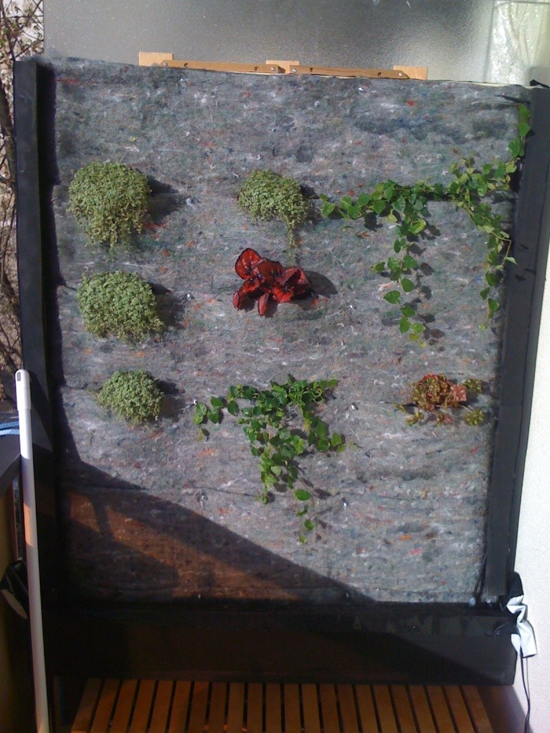 Mur végétal extérieur  9poche10