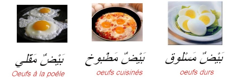 Langages    عربي langages   Oeufs_10