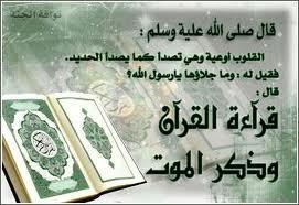 Quelques Hadiths relatifs au Coran Ooouim10