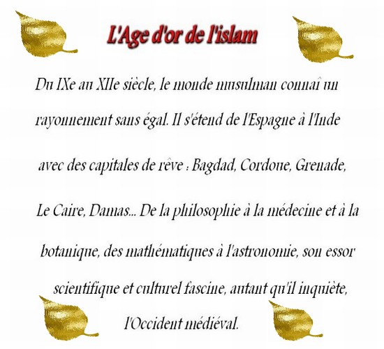 L'Age d'or de l'islam Or_or10