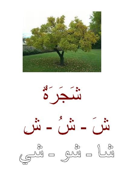 Alphabet arabe suite Ouzouz11