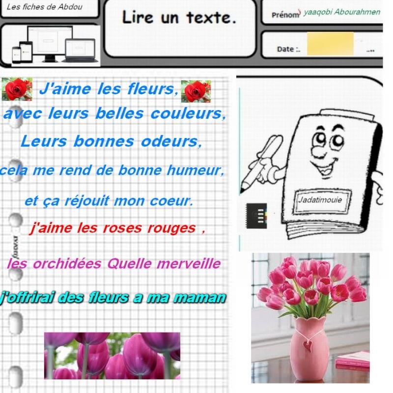 français الفرنسية Xcz12