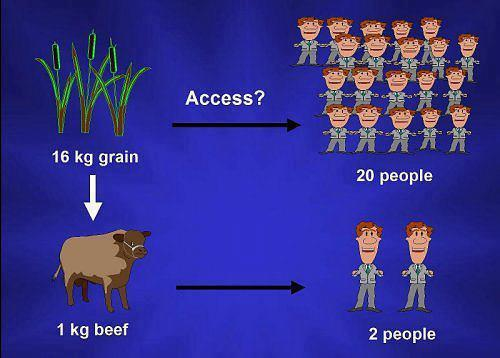 eat meat - Calling All Carnivores - Page 7 48119_10