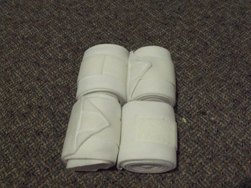 Exercise bandages - set of 4 Dscf6211