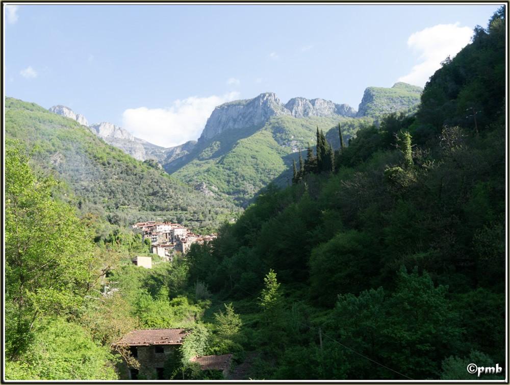 2 jours dans les Alpes ligures : Orchidées, Flore, tourisme Buggio13