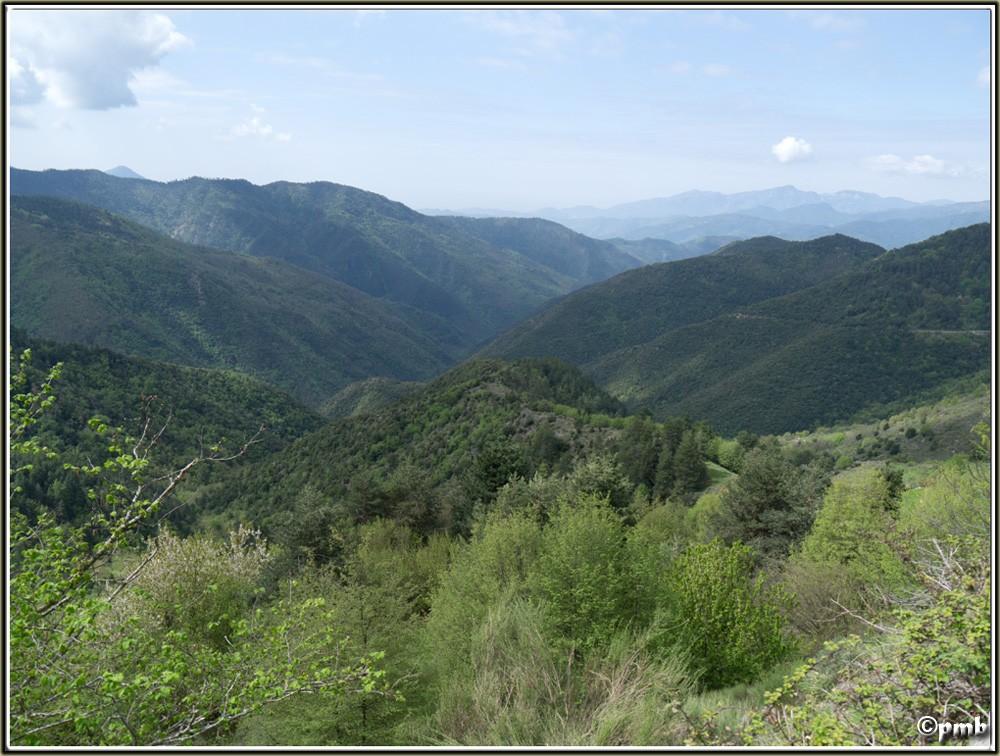 2 jours dans les Alpes ligures : Orchidées, Flore, tourisme Col-de10