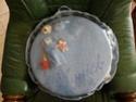 sac pour carreaux ronds Sam_0211