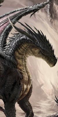 Galerie d'avatars : dragons Dragon14