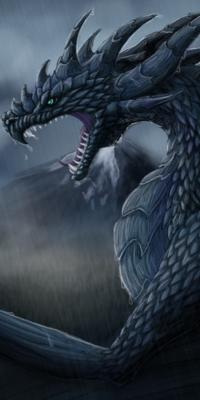 Galerie d'avatars : dragons Dragon20