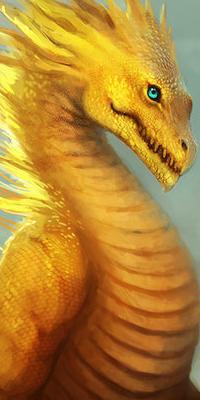 Galerie d'avatars : dragons Dragon21