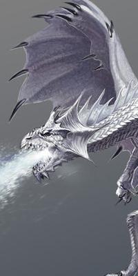 Galerie d'avatars : dragons Dragon28