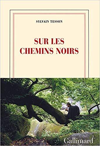 mondialisation - Sylvain Tesson - Page 5 51piyd10