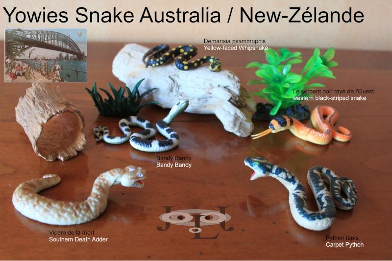 My collection Australian Yowies Animal10