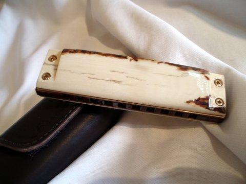 Photos harmonicas Brodur - Page 12 P1010011