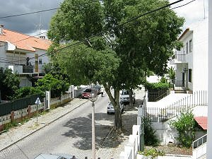 Portugal images Img_0219