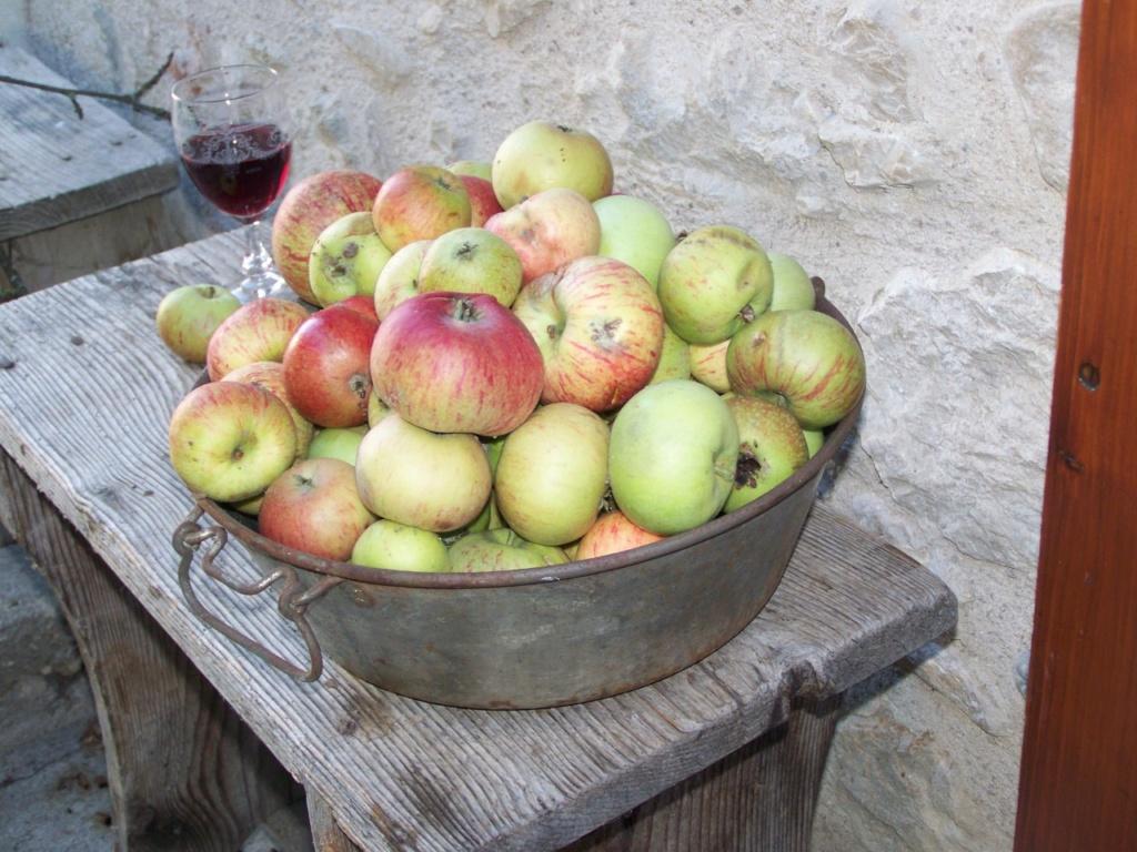 plat à pommes 00136
