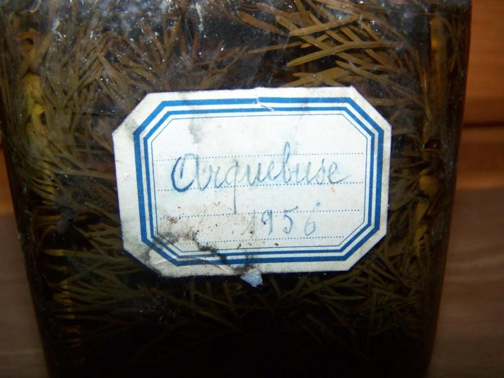 arquebuse 00814