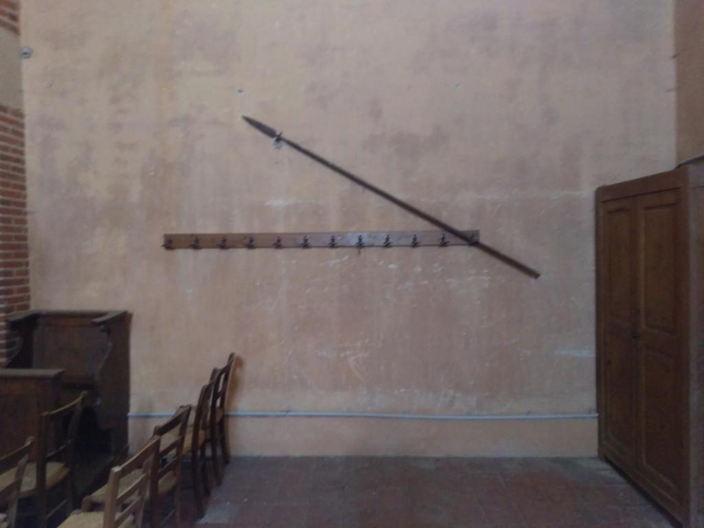 fer de lance à identifier 06010