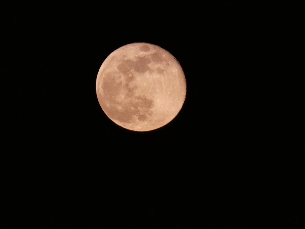 Quelques clichés de la Lune P1040710