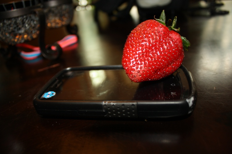 Assignment 14: Photo Scavenger Hunt - Strawberries due May 1 00310