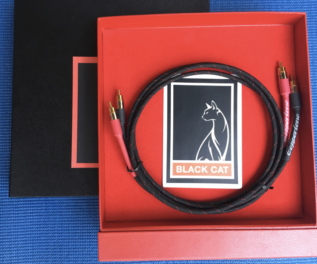 (Sold) Black Cat Cable Coppertone RCA Img_7311