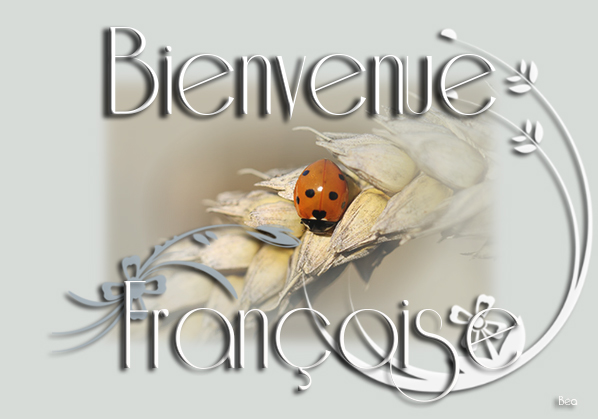 Présentation de seventattoo Franco12