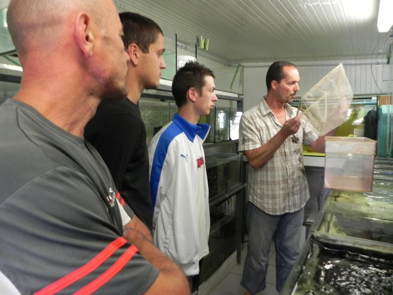 IMPORTANT :Visite chez deux éleveurs  alsaciens le 22 juin - Page 2 Dscn0231