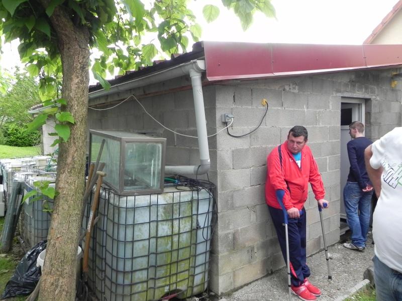 IMPORTANT :Visite chez deux éleveurs  alsaciens le 22 juin - Page 2 Dscn0328