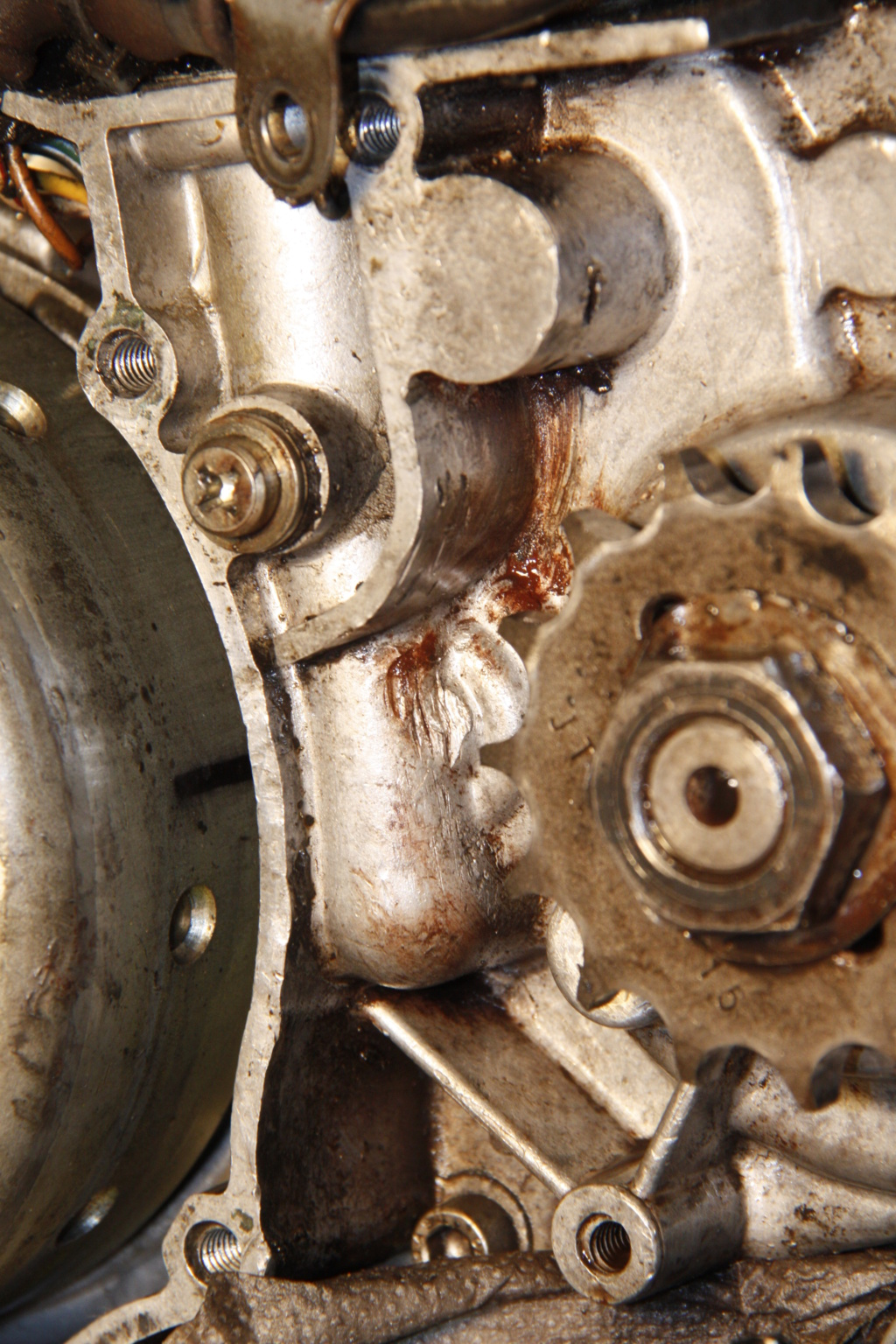 Réparation carter Moteur partie came embrayage _mg_9910