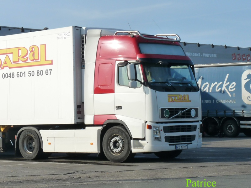 Daral (Rzeszow) 006_co11