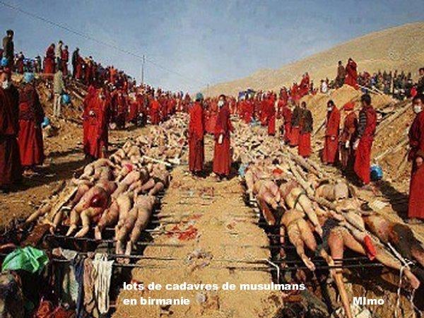 La tragédie des Musulmans en pays de Bouda a Borma Mimoun23