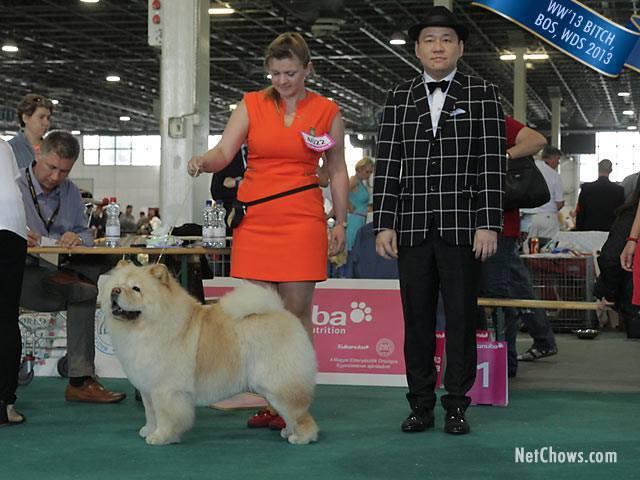 WORLD DOG SHOW 2013-BUDAPEST. 57671910