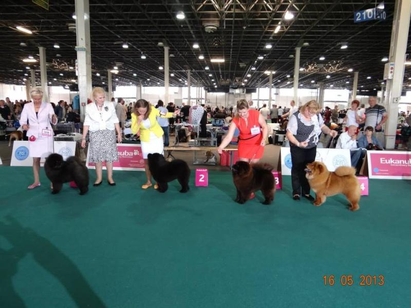 WORLD DOG SHOW 2013-BUDAPEST. 73414710