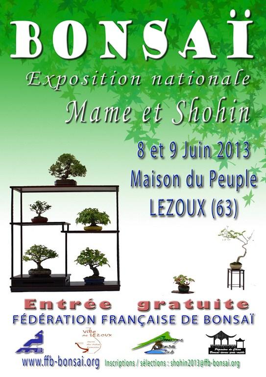"French ""shohin & mame"" Bonsai Exhibition June 8&9 2013 Expo_m11"