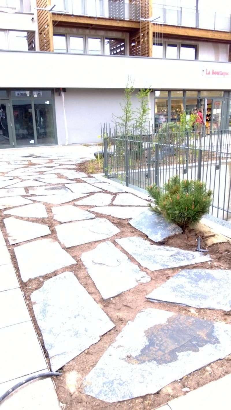 Eco Quartier de la Madeleine à Remiremont - Page 6 Wp_20112