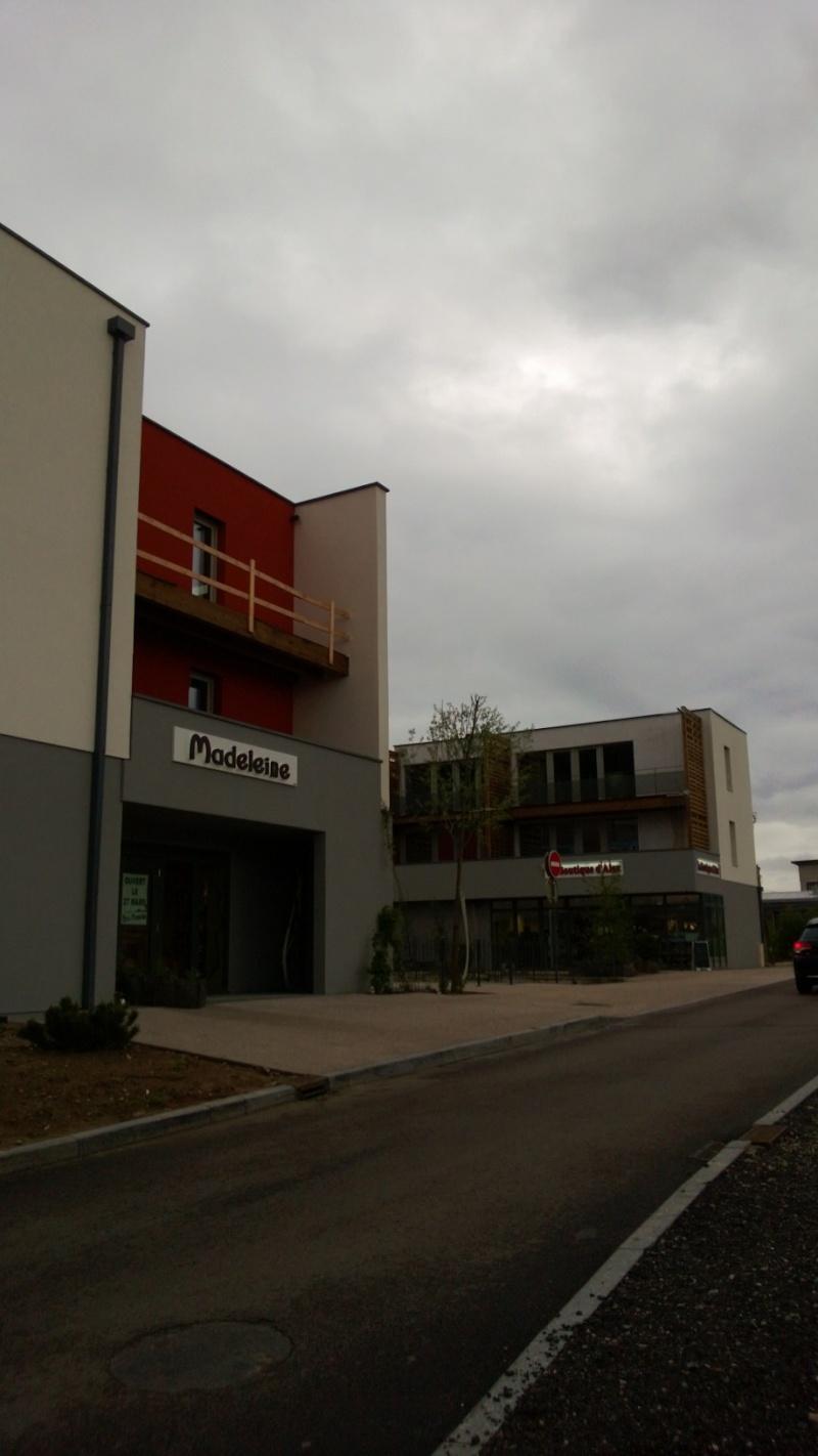 Eco Quartier de la Madeleine à Remiremont - Page 6 Wp_20113