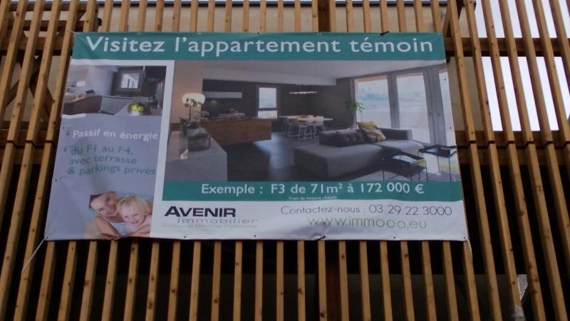 Eco Quartier de la Madeleine à Remiremont - Page 6 Wp_20114