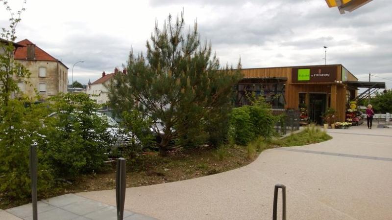 Eco Quartier de la Madeleine à Remiremont - Page 7 Wp_20128