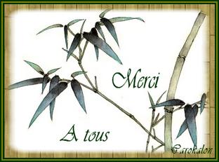 Bretonne du Finistère29 Zenwai10