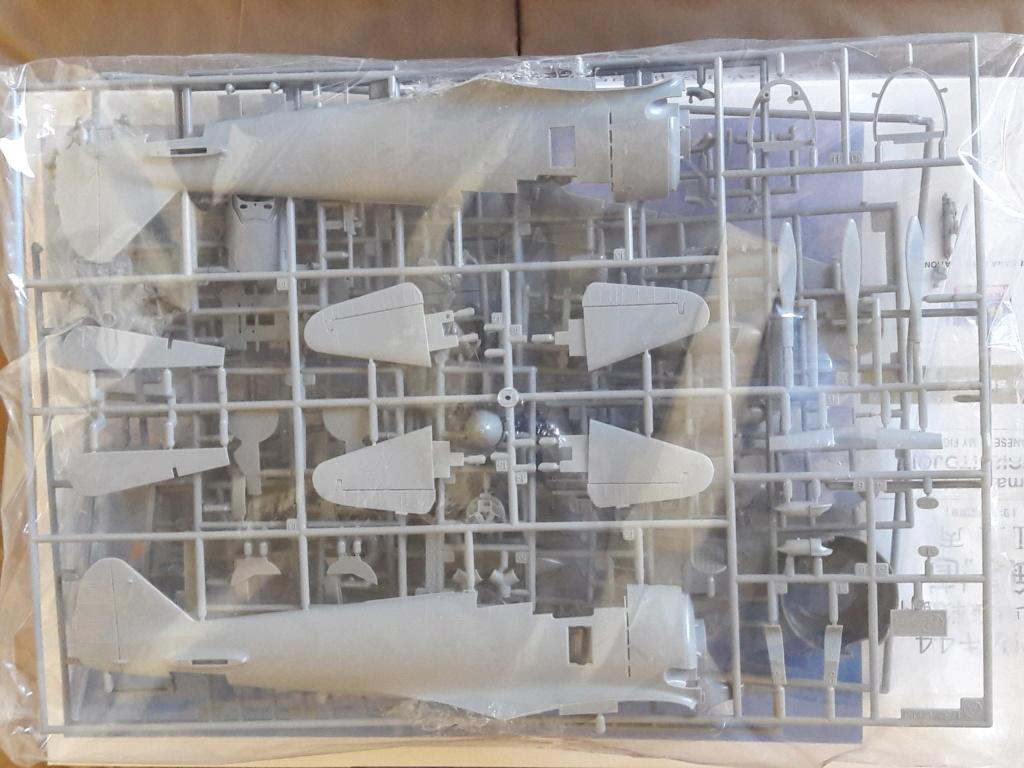 "brille - [Concours ""ça brille""] Ki-44 II - Hasegawa - 1/32  (École de chasse d'AkEno) 20190245"
