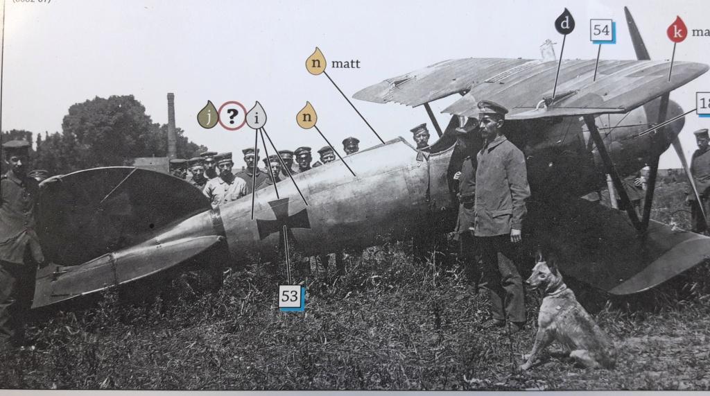 Albatros D.V l'avion du baron rouge - Page 7 20190724