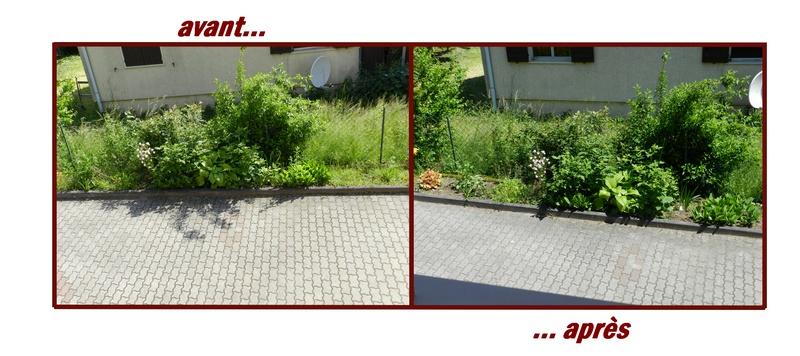 Mon extérieur - Page 6 Avant-11