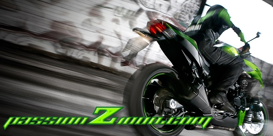 Passion Z1000