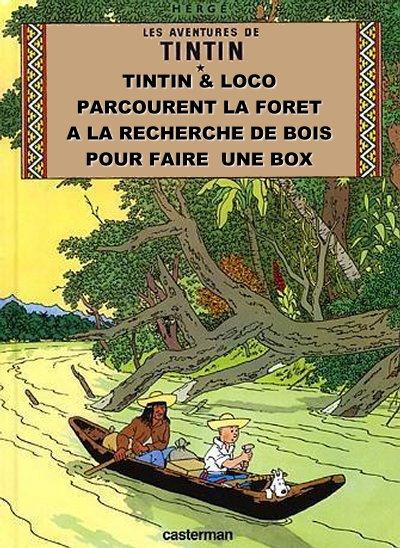 Le jeu du détournement... - Page 2 Tintin12