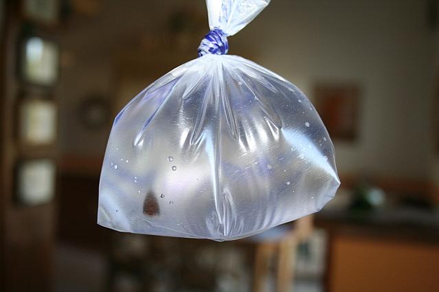 Tutoriel sur l'envoi de poissons par colis postal Img_3918